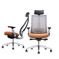 Office Chairs & Training Chairs